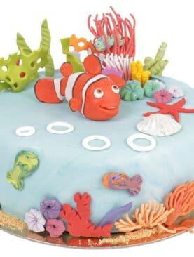 Tort cu Nemo